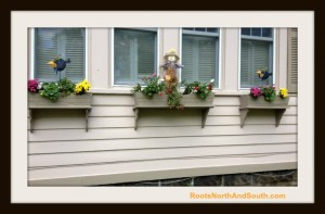 Window Boxes Waiting for Pansies and Pumpkins