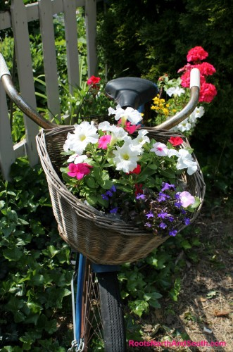 Bicycle Baset of Flowers