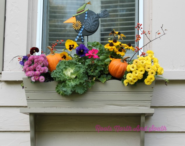 Ideas for Fall Window Boxes on the Garden Tour