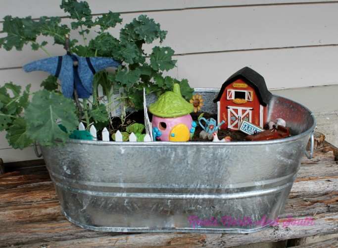 Fairy Gardens and Miniature Gardens