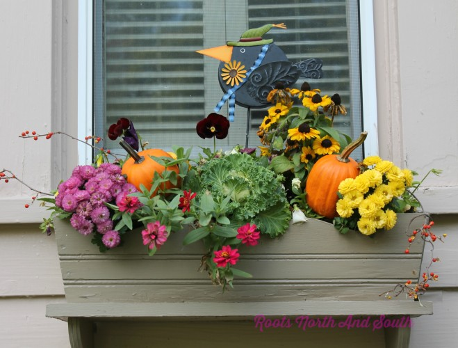 Fall Window Box Ideas on Garden Tour