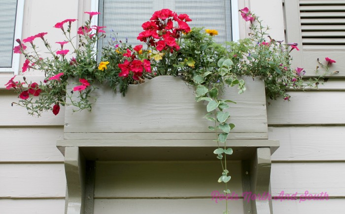 Side Window Box