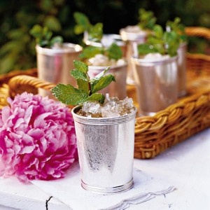 Mint Julep & Southern Living