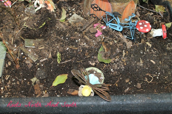 Fairy gardens in photos