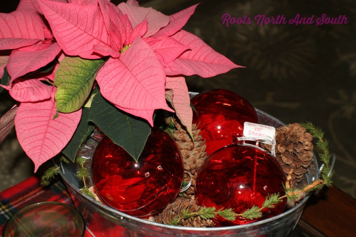 Poinsettias on the Coffee Table at Christmas