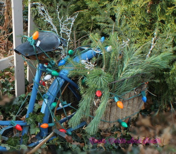 Holiday garden tour