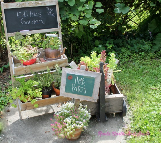 Creative Containers for an Edibles Garden