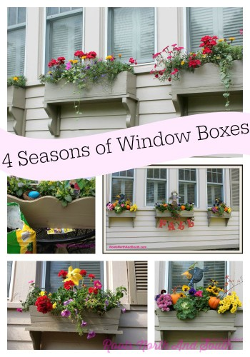 Window boxes for all seasons roots north south for Gardening 4 all seasons