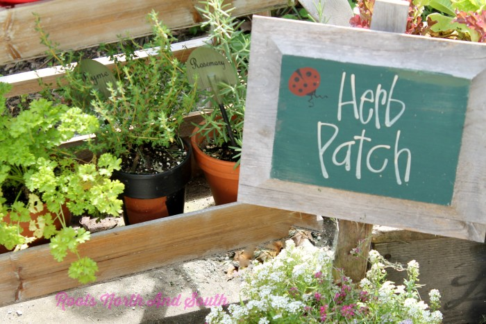 Container Herb Patch
