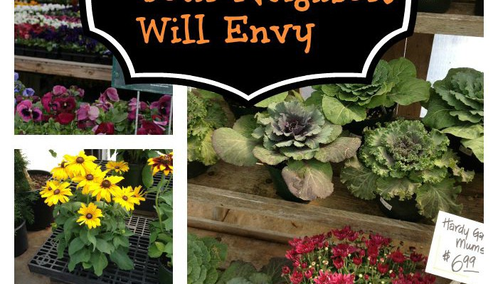 Creating a Fall Window Box Your Neighbors will Envy