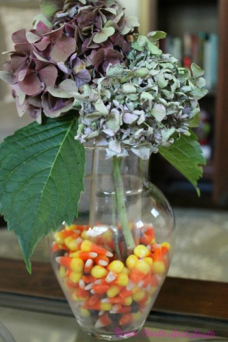 Hydrangeas and Candy Corn