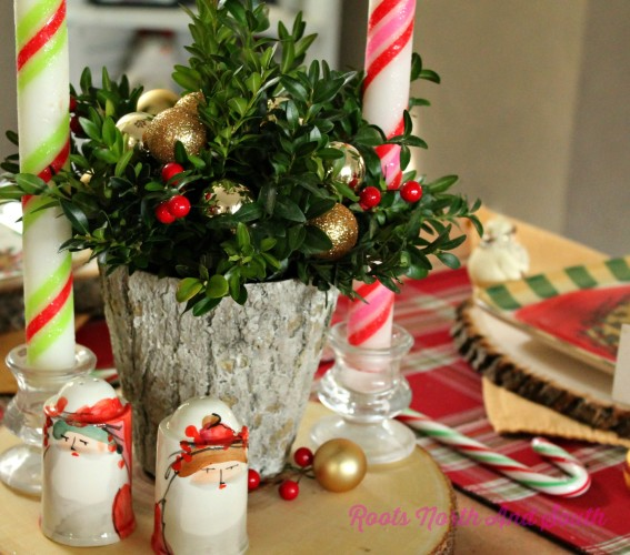 Boxwood Centerpieces for Christmas