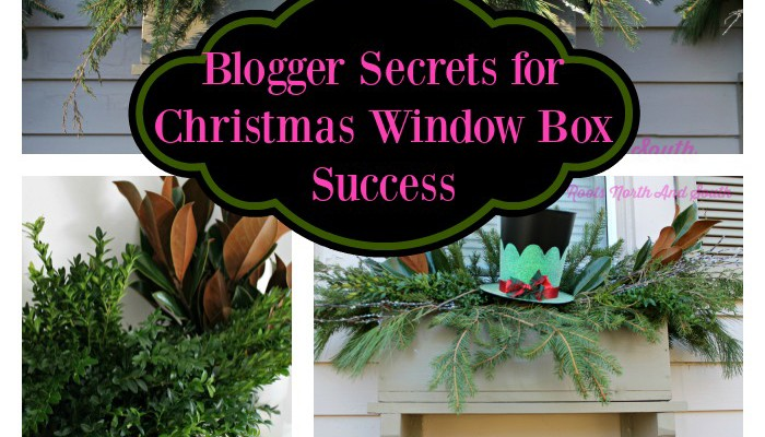 Gardener's Best Secrets for Creating Christmas Window Boxes