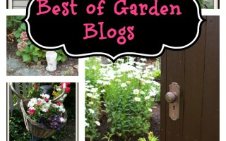 Virtual Garden Tour of the Best Garden Blogs on the Web