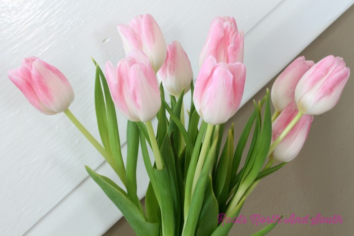 Keeping fresh cut tulips alive longer