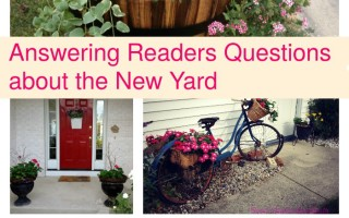 Answering Readers' Questions about Our New House Garden