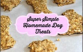 Homemade Dog Treats for the Kids to Make