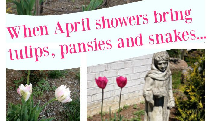 April Showers Bring May Flowers, Weeds & Snakes!