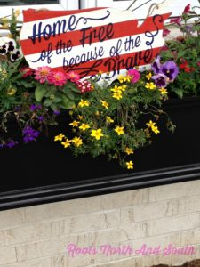 Decorating window boxes for July 4th